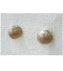 Mini Shell Earrings